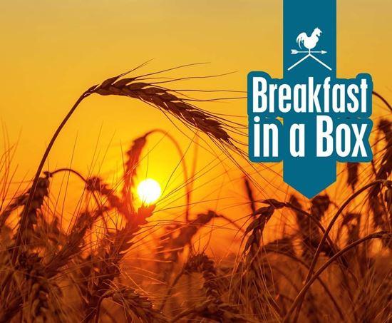 breakfast in a box